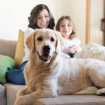 Pros and Cons for Pet-Friendly Investment Properties